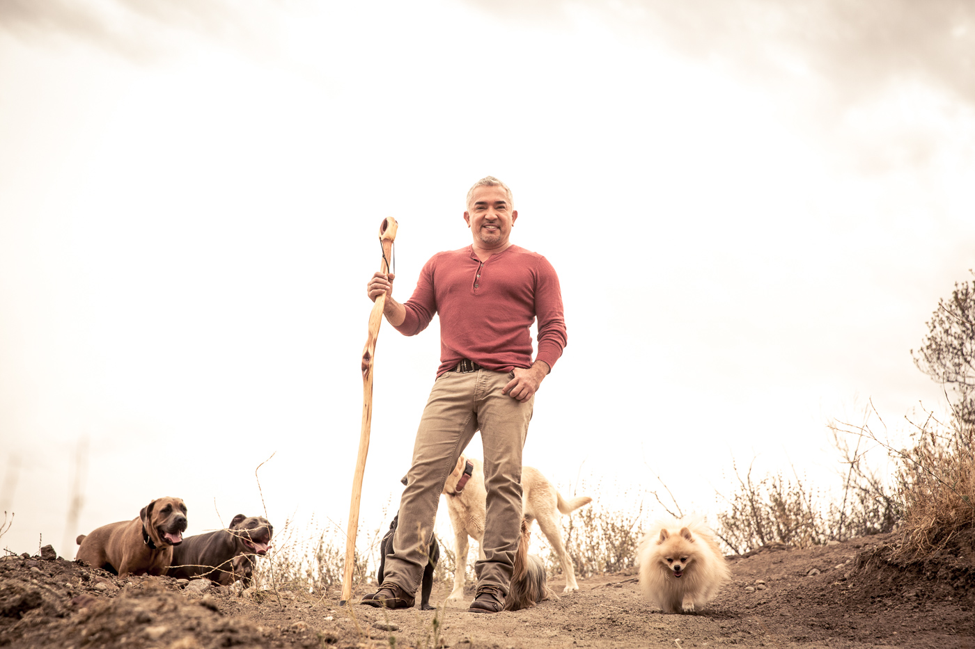 Cesar Milan Lessons From the Pack